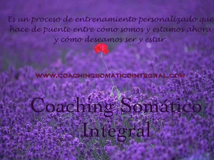 coaching somático integral copia