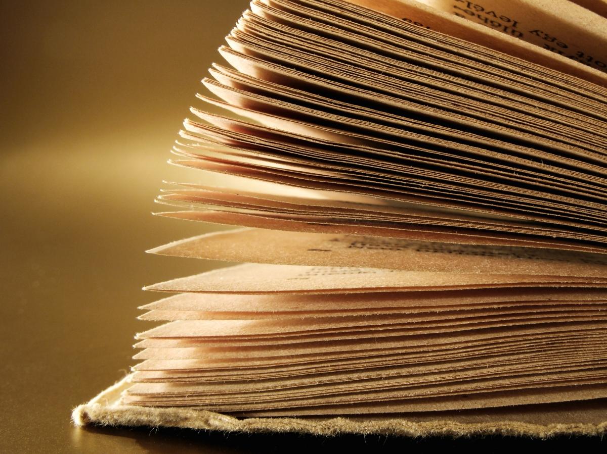 Libros de conciencia gratis para descargar | AUTOCONOCIMIENTO INTEGRAL