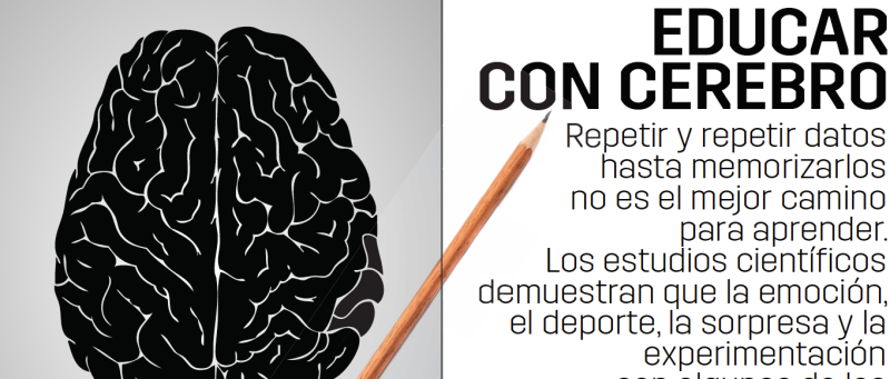 educar con cerebro..